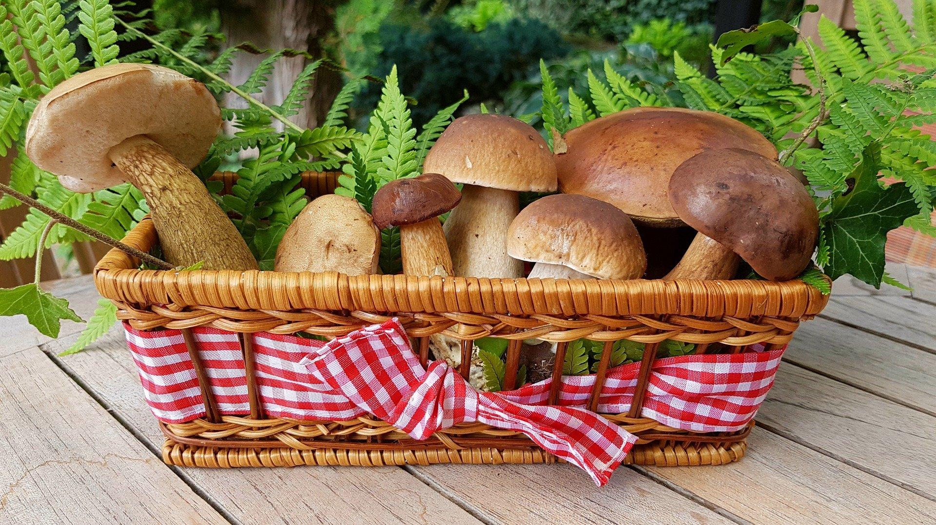 healthy-christmas-food-mushrooms